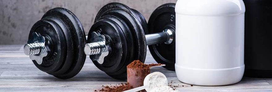 protéine prendre pour se muscler