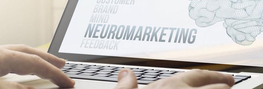 Trouver des experts en UX design et neuromarketing digital