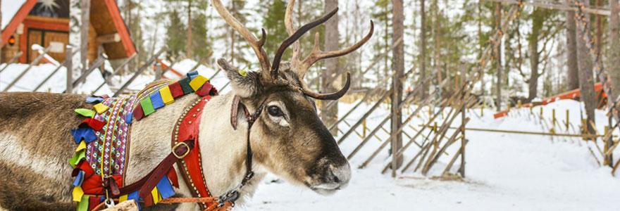 Explorez la Laponie
