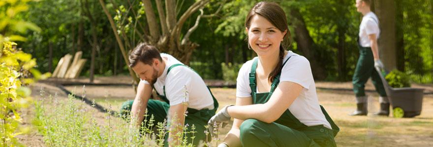Entreprise de jardinage en Seine et Marne